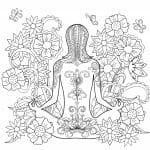 Mandala seguros bolívar