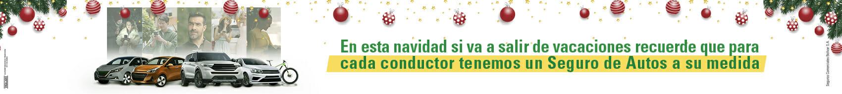 Banner Navidad autos - 1700 x 190
