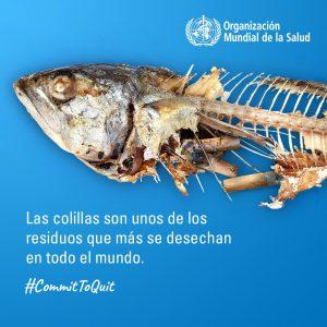 dia mundial contra el tabaco oms