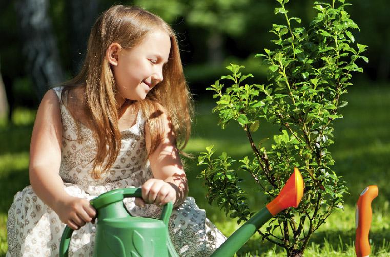 medio-ambiente-plantar-un-arbol